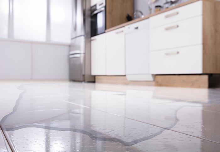 détection de fuite d'eau à domicile particulier